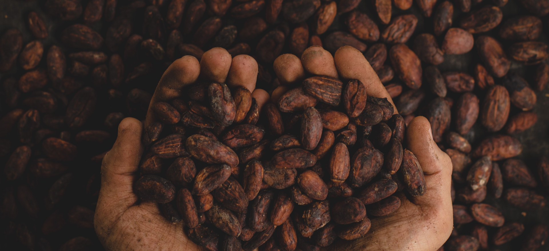 01-cafe-colombia